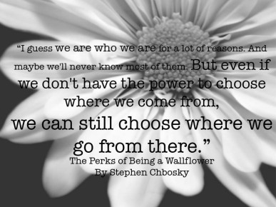 http://craving4more.files.wordpress.com/2013/02/perks-quote-the-perks-of-being-a-wallflower-4207030-864-648.jpg